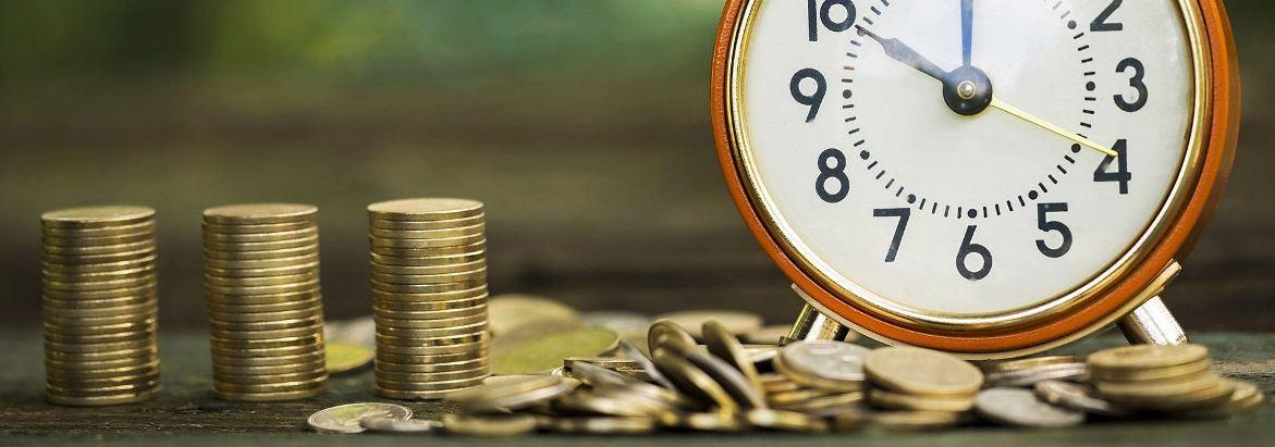 срок и порядок внесения уставного капитала ооо